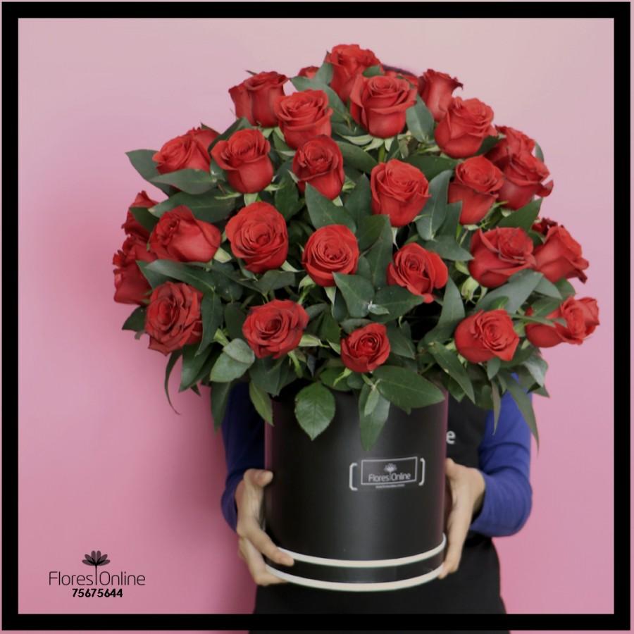 50 Rosas Premium (Cod.2047)