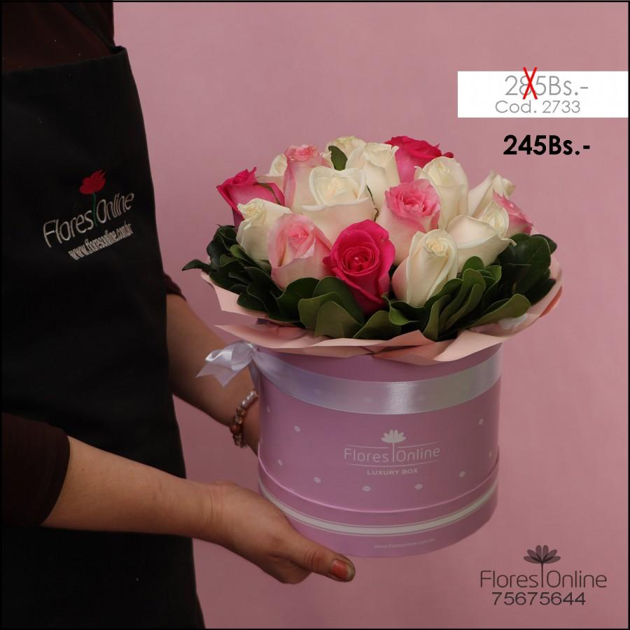 Delicadeza Pink (Cod.2733)