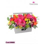 Colores Vibrantes (Cod.0868)