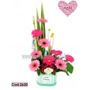 Encanto Gerberas Tonos Pink (Cod.2620)